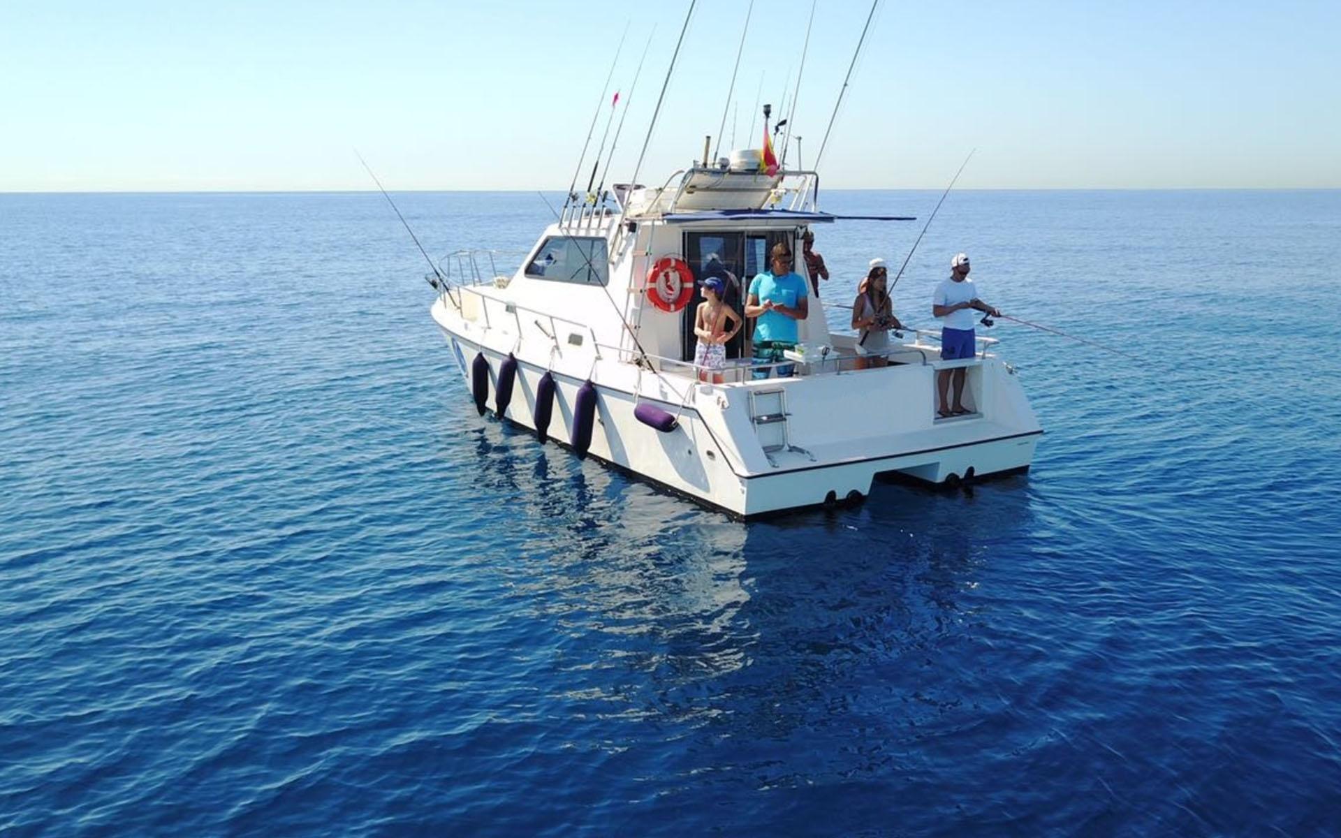 Cata 326 Purefishing