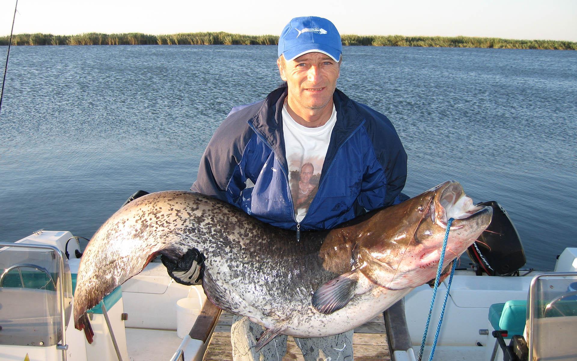 Salidas de pesca del siluro en el Ebro