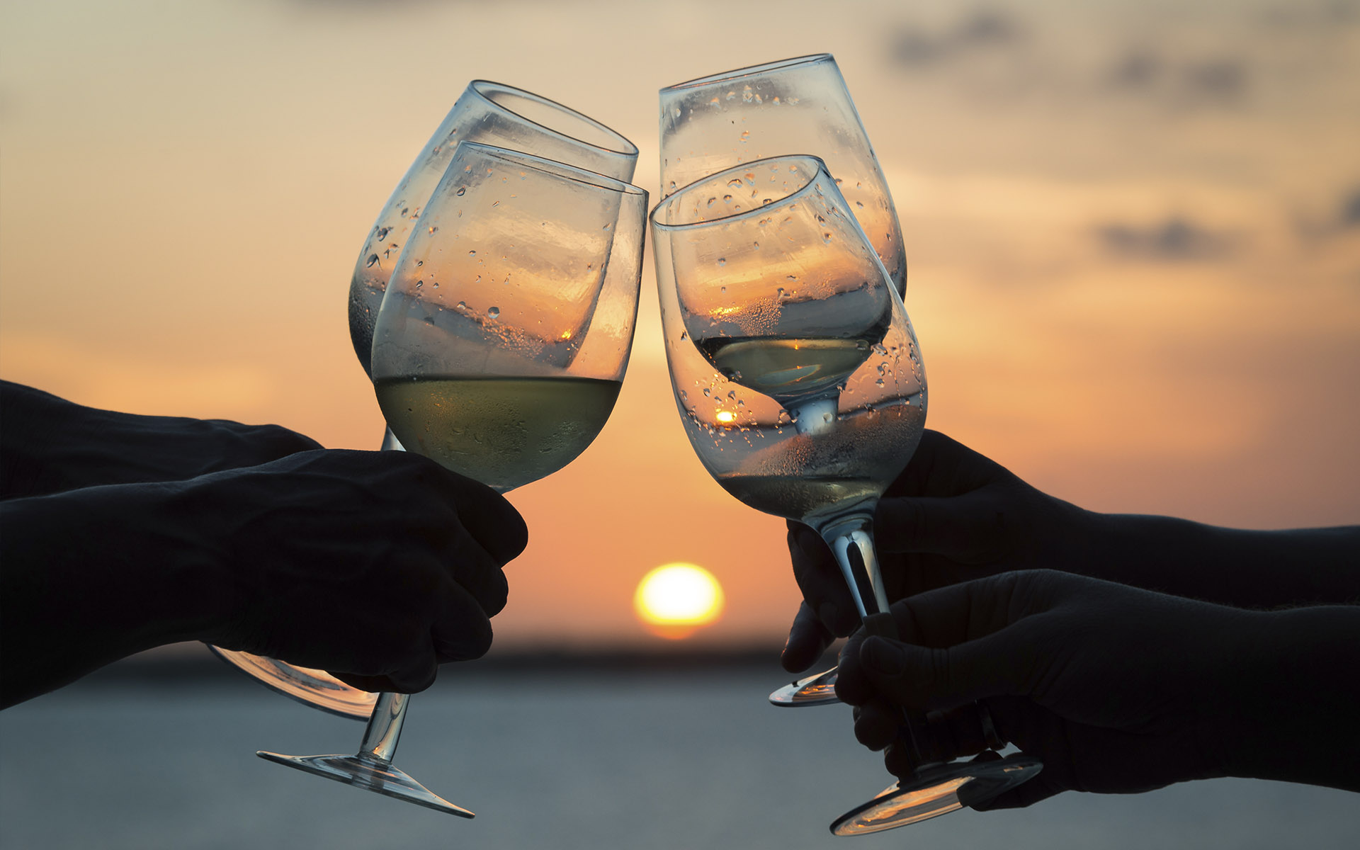 Puesta de sol y cena en un velero en el Delta del Ebro